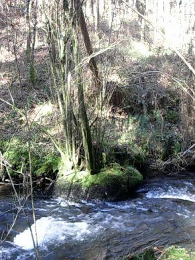 Paseo por el Rio Mandeo R%C3%ADo-Mandeo-22-el-rio