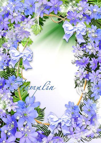 Цветочная рамочка для ваших фото в Нежно-голубых тонах