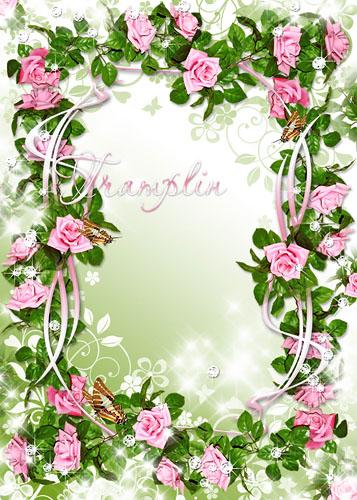 Рамка для фото – В розовый сад, в зеленый сон