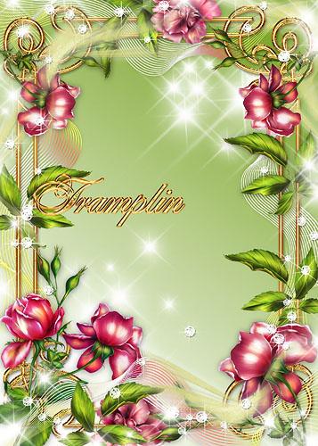Рамка с розами – Цветок любви, любви до высшей точки