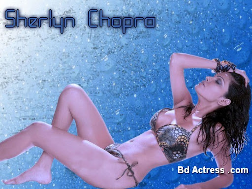 Bollywood Actress Sherlyn Chopra Photo-04