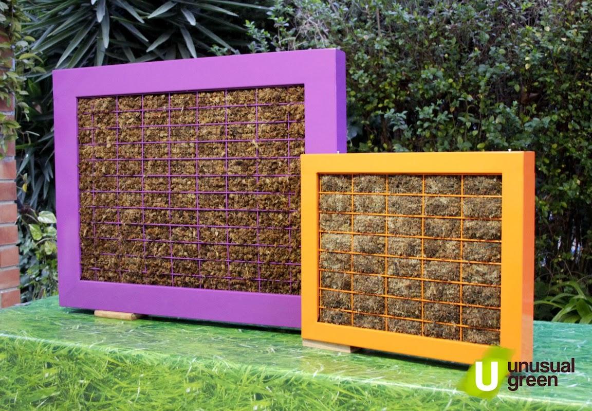 Cuadros vegetales urbanarbolismo - Cuadro jardin vertical ...