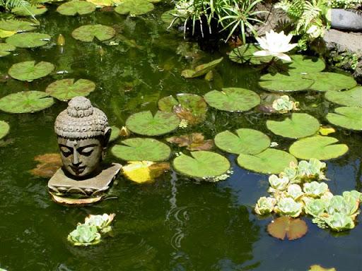 Buddhist Garden Design Image water in buddhist garden design