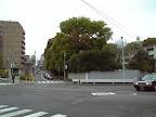 薩摩藩渋谷藩邸跡地