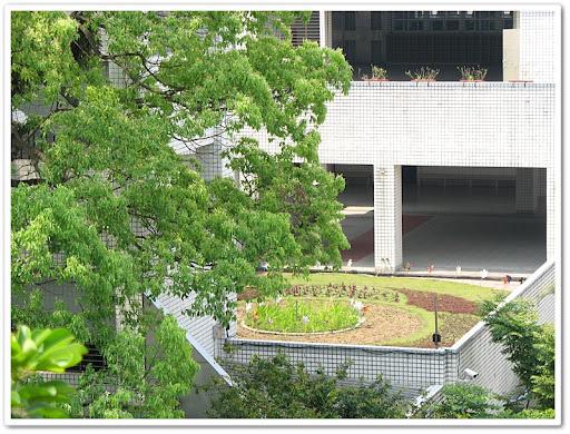 從其他大樓遠眺紓壓庭園