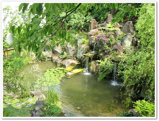 成德國中生態池