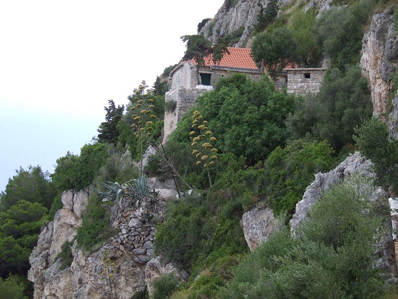 Chorwacja apartamenty wakacje u joli tekst chwyty