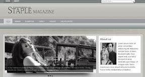 Free Wordpress Theme - STAPLE