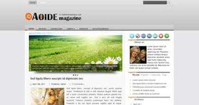 Free Wordpress Theme - AOIDE