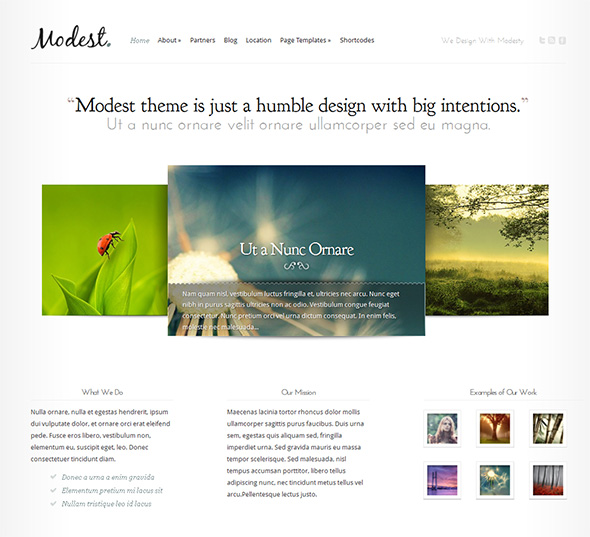 Modest Minimalist Design WordPress Theme