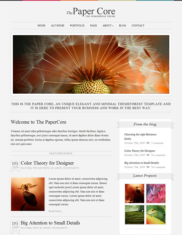 The PaperCore Minimalist Design WordPress Theme