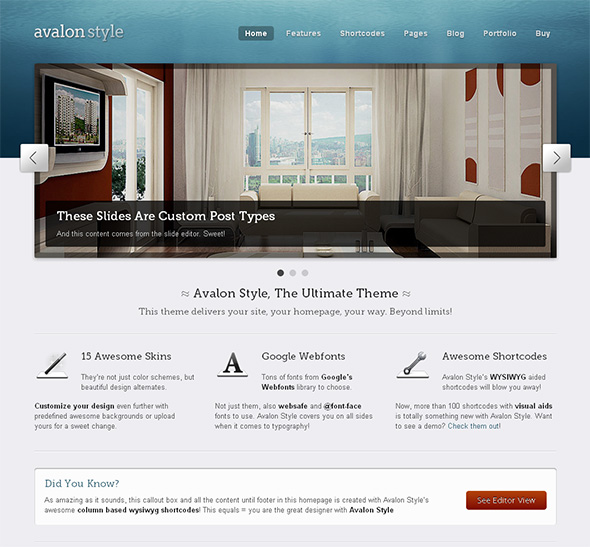 Avalon Professional WordPress Theme