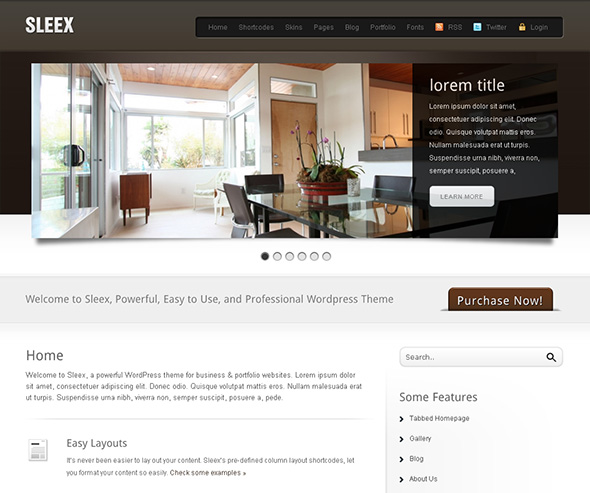 Sleex Professional WordPress Theme