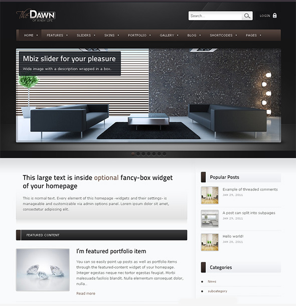 theDawn Professional WordPress Theme