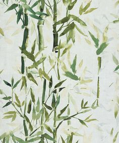 Bamboo Green wallpaper by Albany