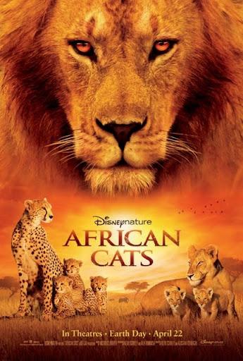 โปสเตอร์ African Cats