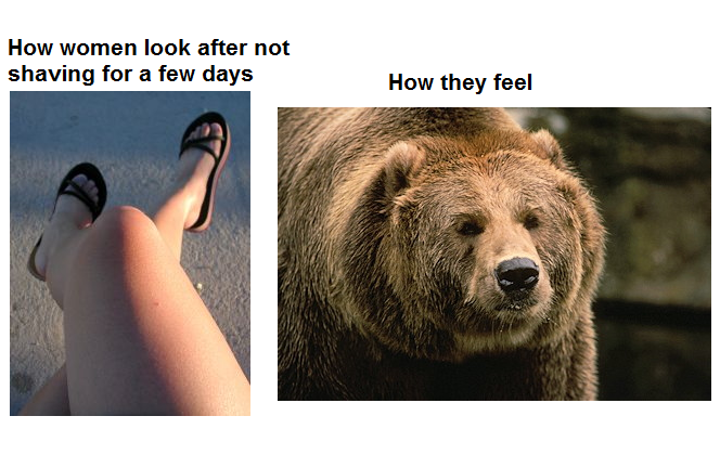 Unshaven Legs - How Women Look After Not Shaving For A Few Days - How They Feel