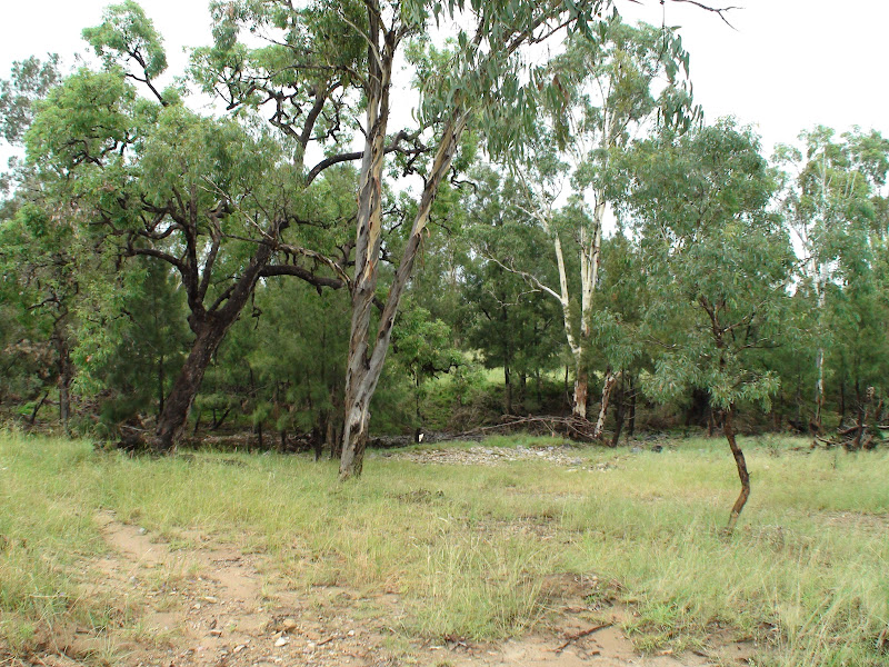 Warwick Fossicking Area [video] Image001