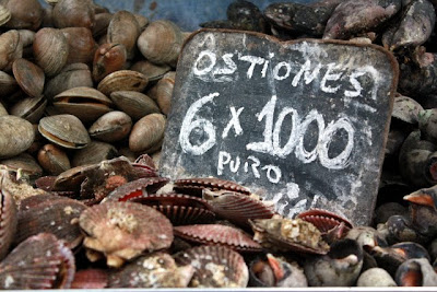Shellfish at a Valparaiso Chile market