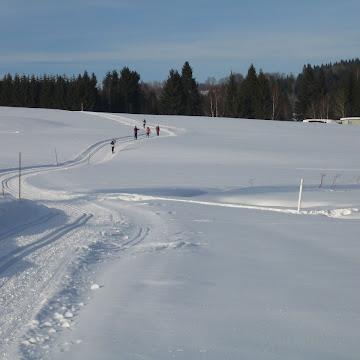 Skilanglauf Bischofsreuth