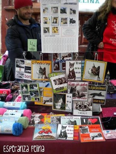 """Esperanza Felina en """"El Mercado de La Almendra"""" en Vitoria - Página 2 DSCN4273"""