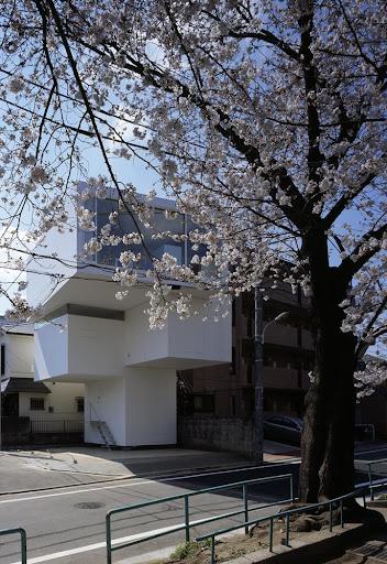 a      f      a      s      i      a: Junichi Sampei/