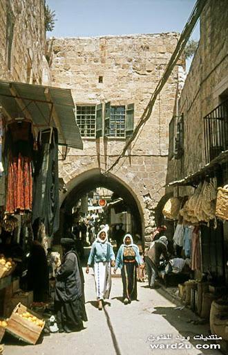 فلسطين كأنك تراها فى رحله فوتوغرافيه