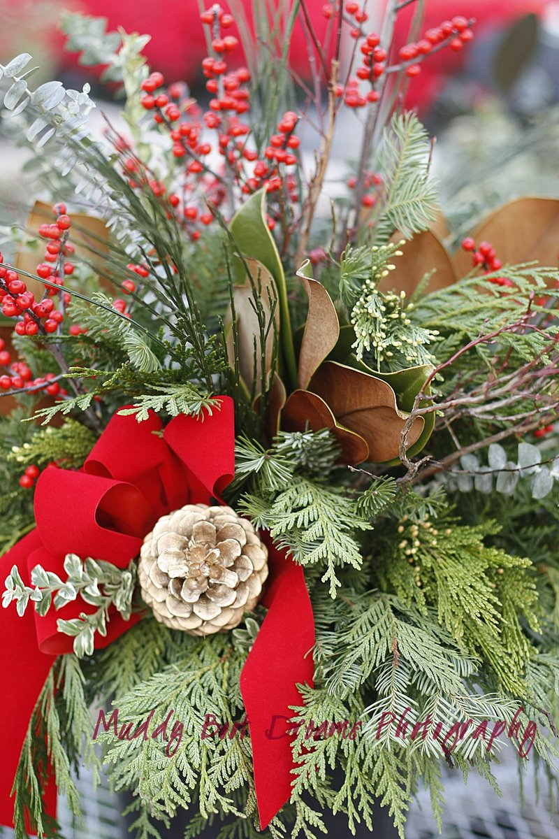 Christmas Planters a bright welcome at your door.