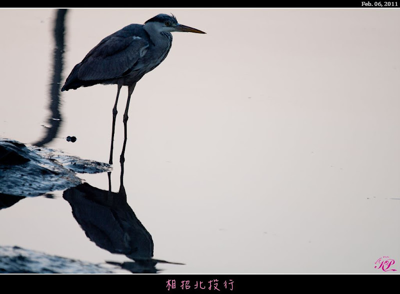 100/02/07~相招北投行~