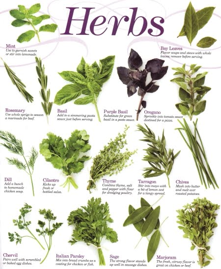 Herbs and Spices For Good Health