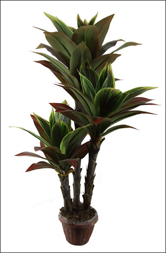 tropical indoor artificial dracaena plants