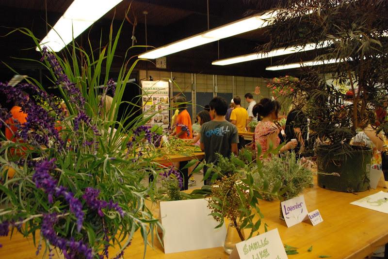 OCC Horticulture Club Science Night