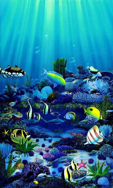 عکس ماهی آکواریومی