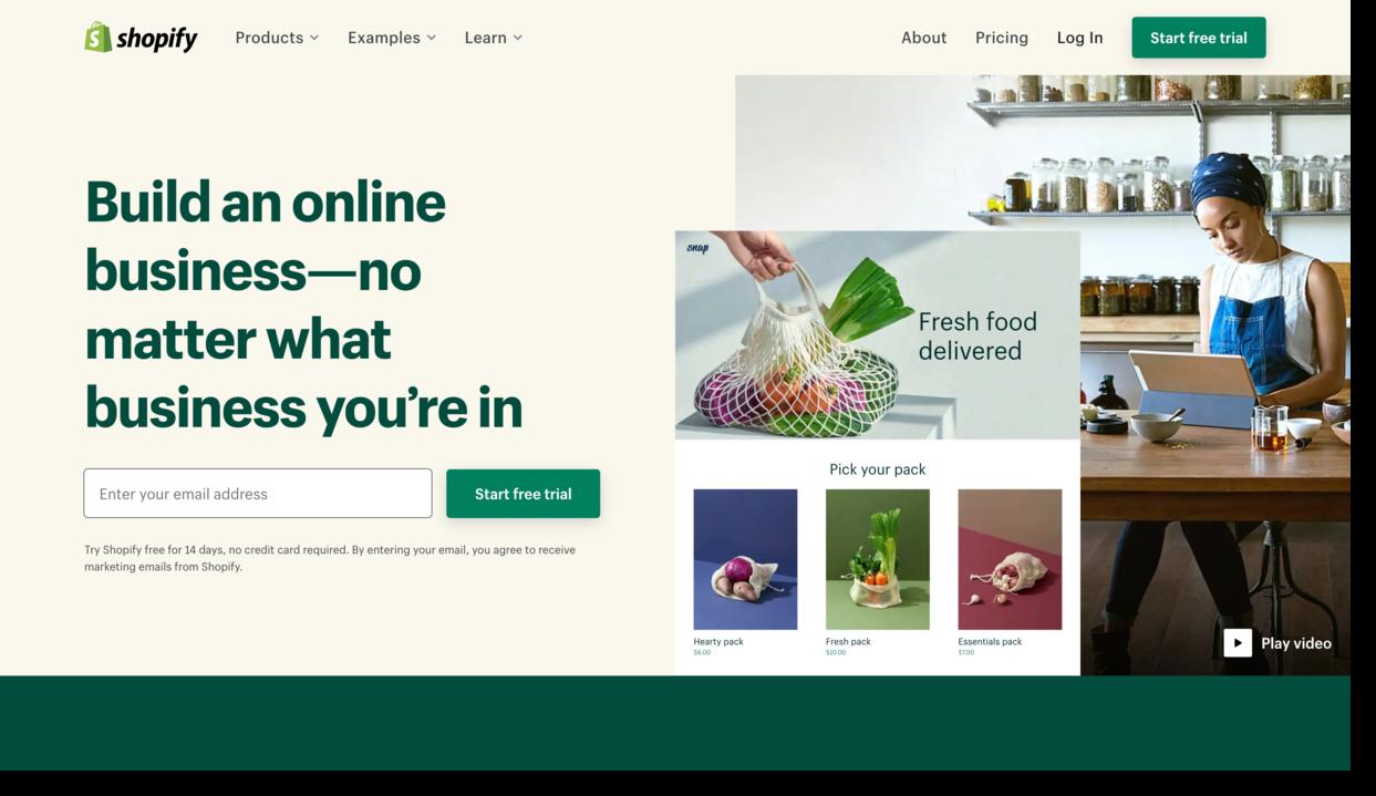 shopify expert website screenshot