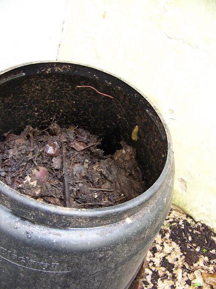 inside the offending bin