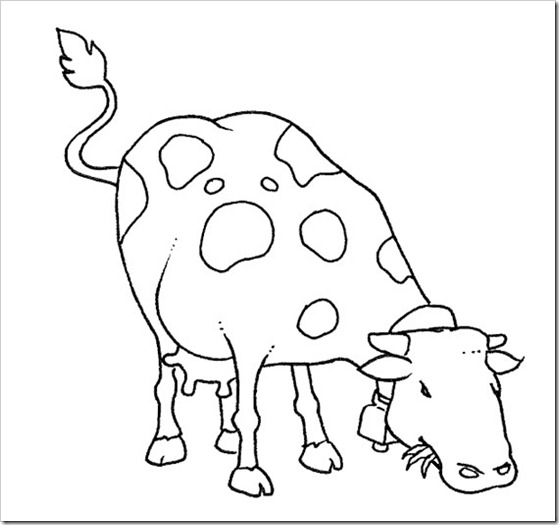 ciclo de la leche (3)
