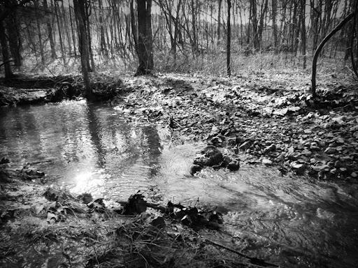 Winter Stream by Doug Hagler