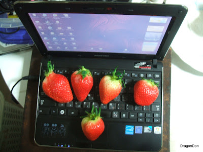 Who knew that only 5 strawberries would cover my entire keyboard!