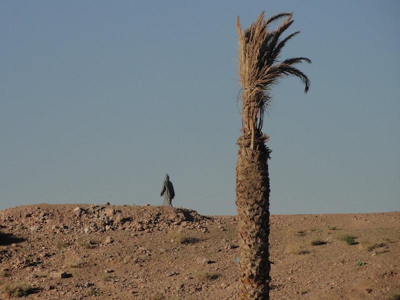 Passeando por Marrocos... - Página 3 DSC07739