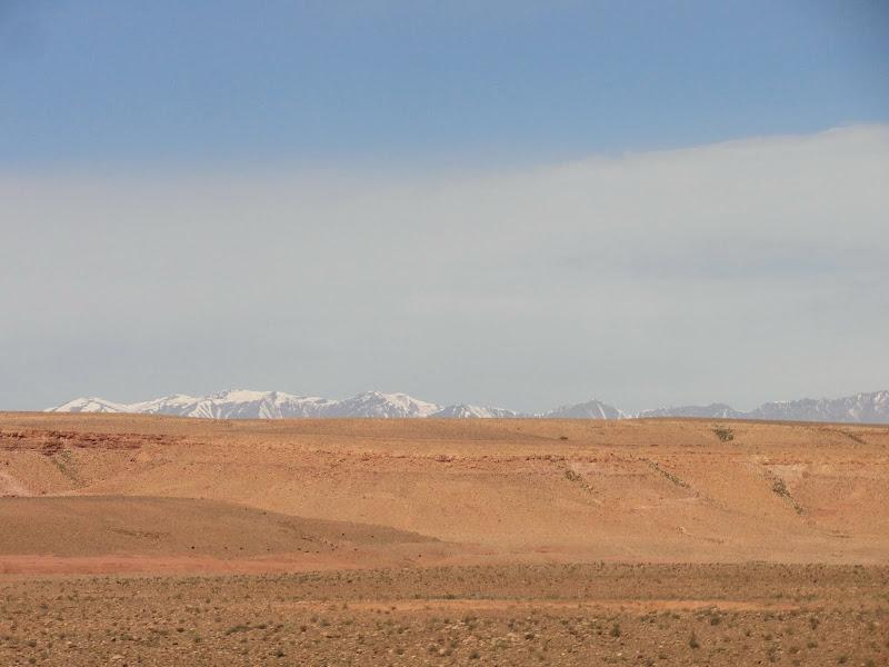 marrocos - Passeando por Marrocos... - Página 4 DSC07831