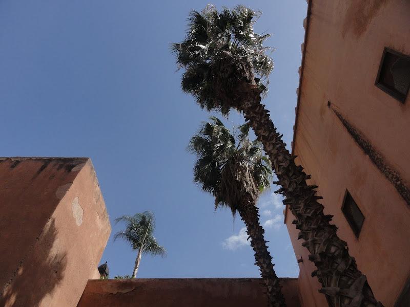 Passeando por Marrocos... - Página 5 DSC08243