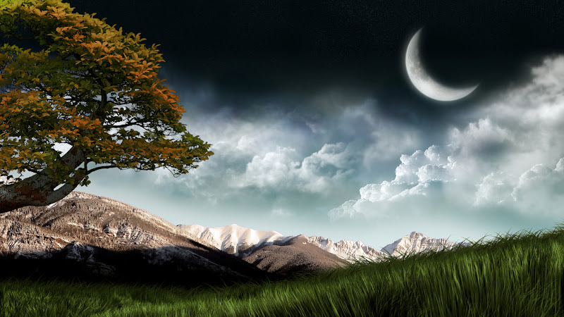16 Moonlit Nights Wallpaper Collection For Your Desktop