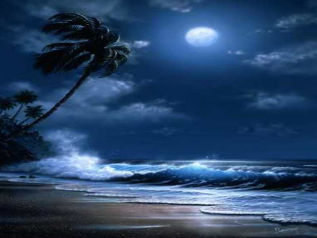 Tropical%20Moonlight%20 Moonlit Nights Wallpaper Collection For Your Desktop