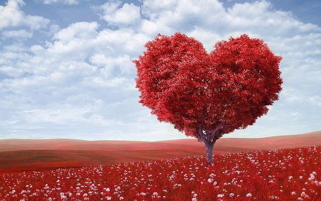 arbre feuillage en forme de coeur