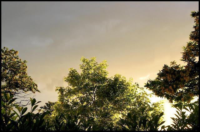 Le ciel va tomber sur notre tête ! - Page 2 Thonon-15.05%20%281%29