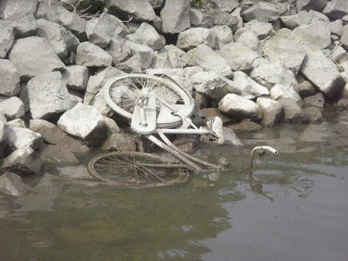 Woudrichem Bici seccata