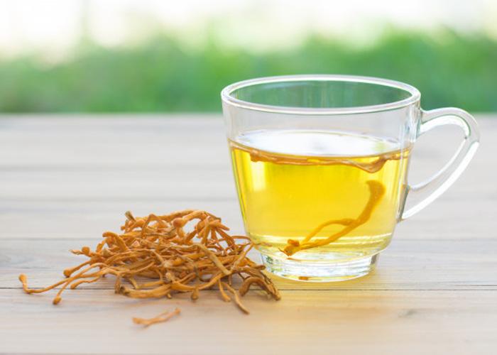 Sử dụng thảo dược đông trùng hạ thảo hỗ trợ điều trị bệnh huyết áp cao