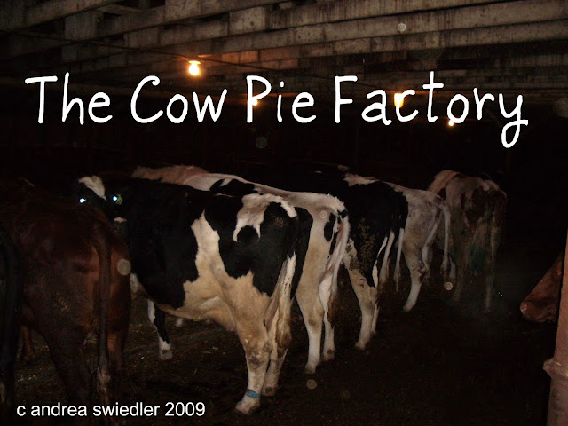 The Cow Pie Factory