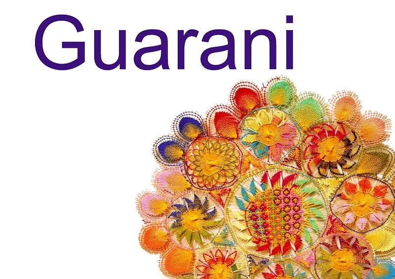 Guía para estudiar guaraní en el exterior