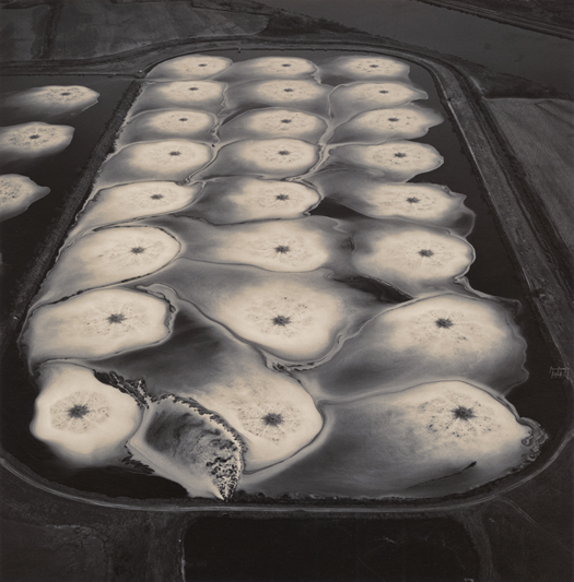 Beauty is Nothing by Emmet Gowin